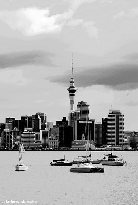 Black And White Pictures Nz